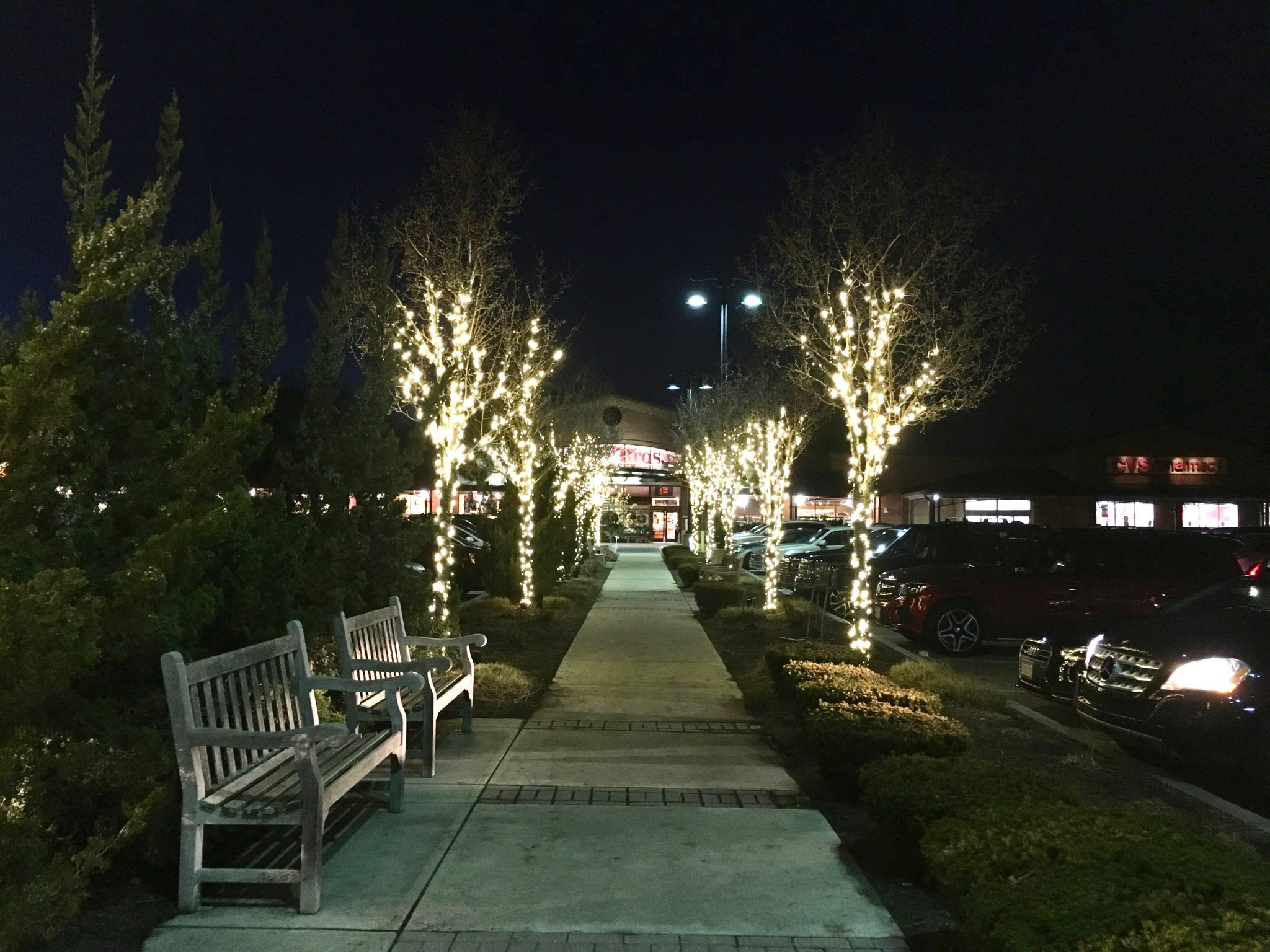 Linden Square, Christmas Tree Lighting