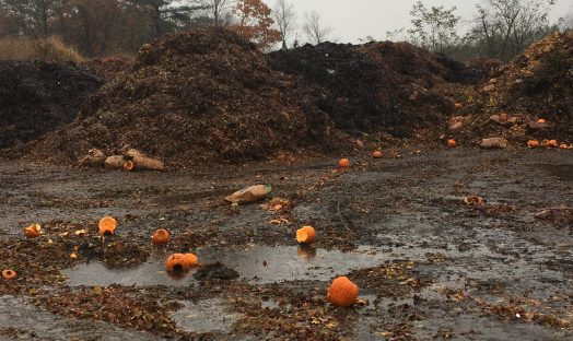 pumpkin graveyard wellesley