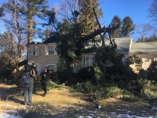 Wind-damaged home, Wellesley