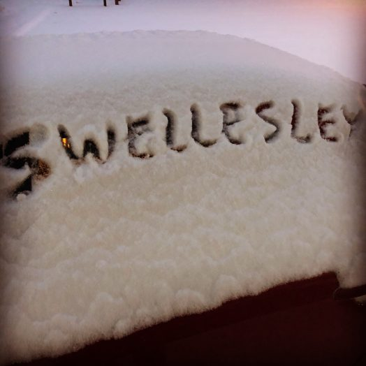 swellesley snow
