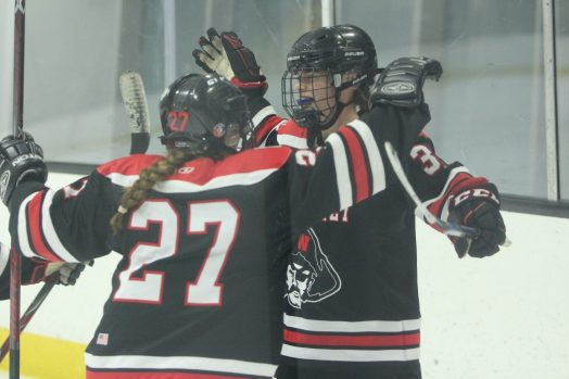 whs girls hockey