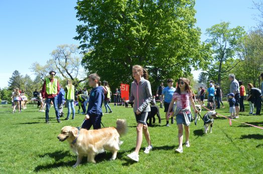 wellesley dog contest