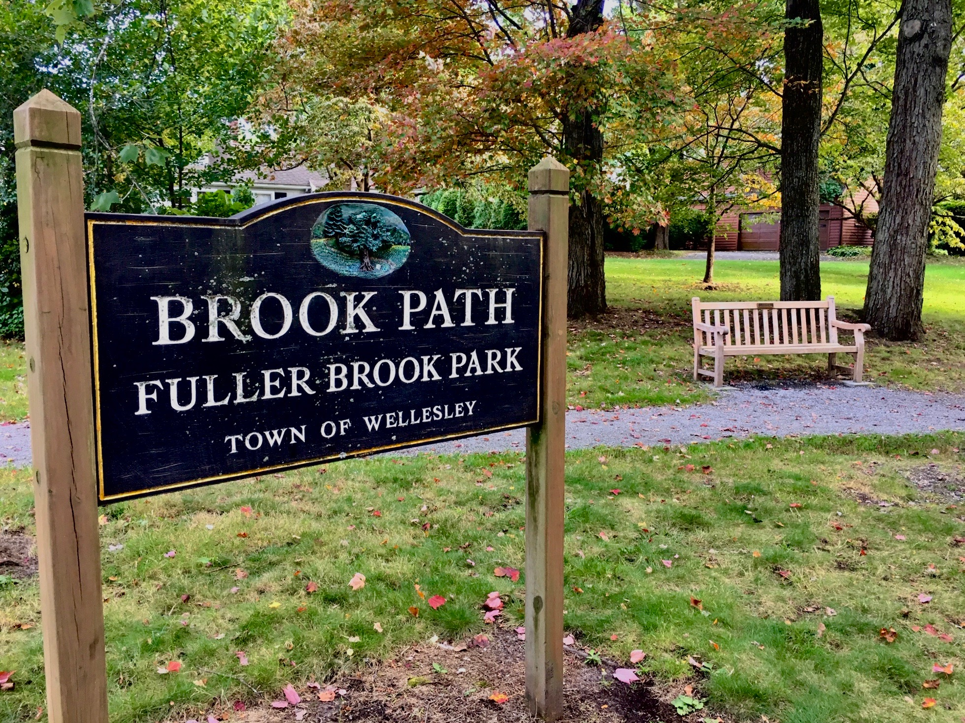 Fuller Brook Park, early fall 2019