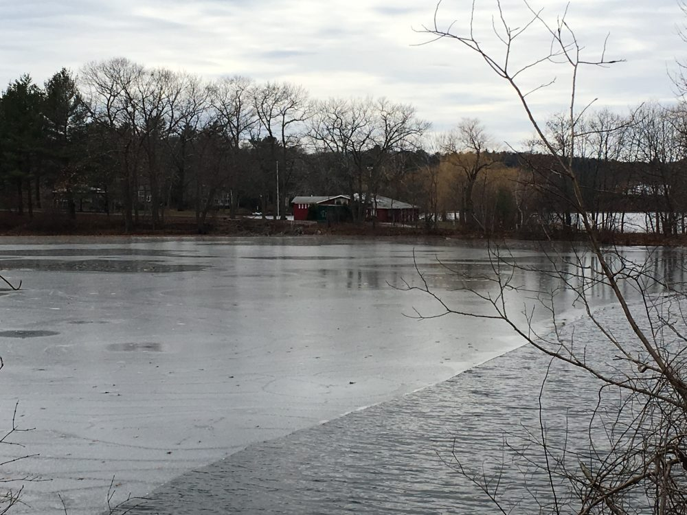 Morses Pond, Ice House Pond, Winter 2019