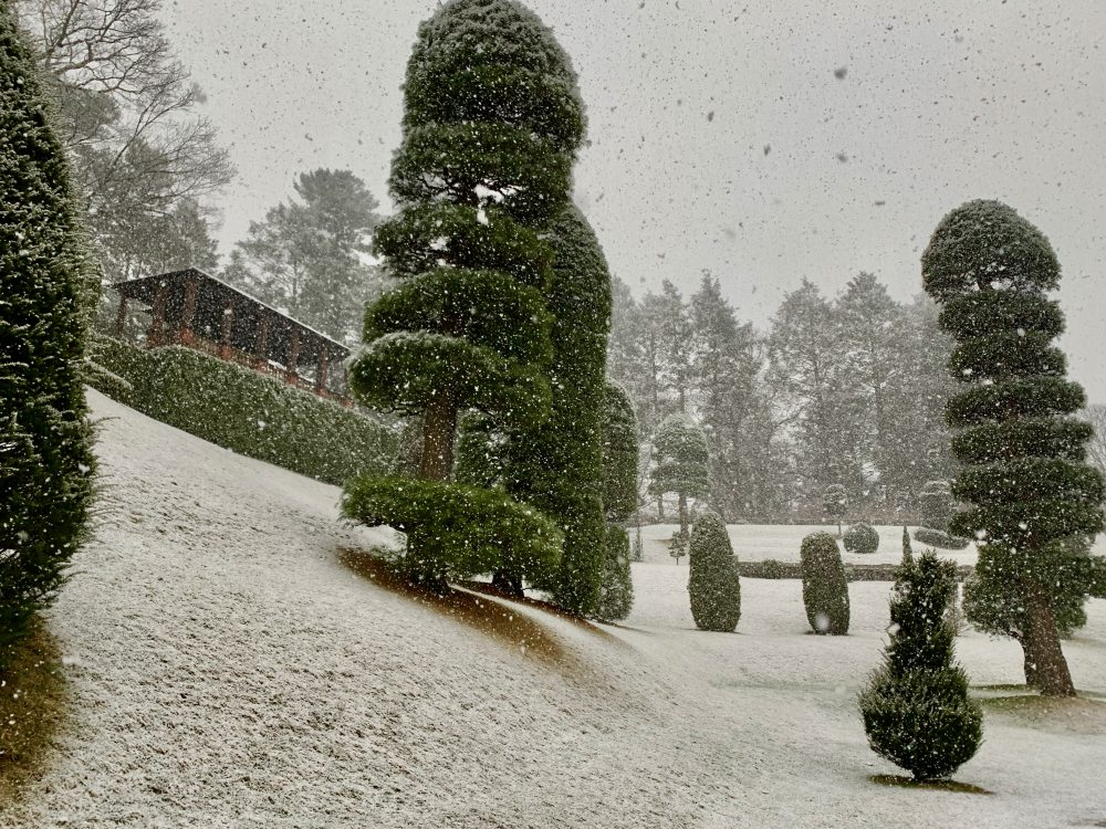 Snowy topiary, Hunnewell, Wellesley