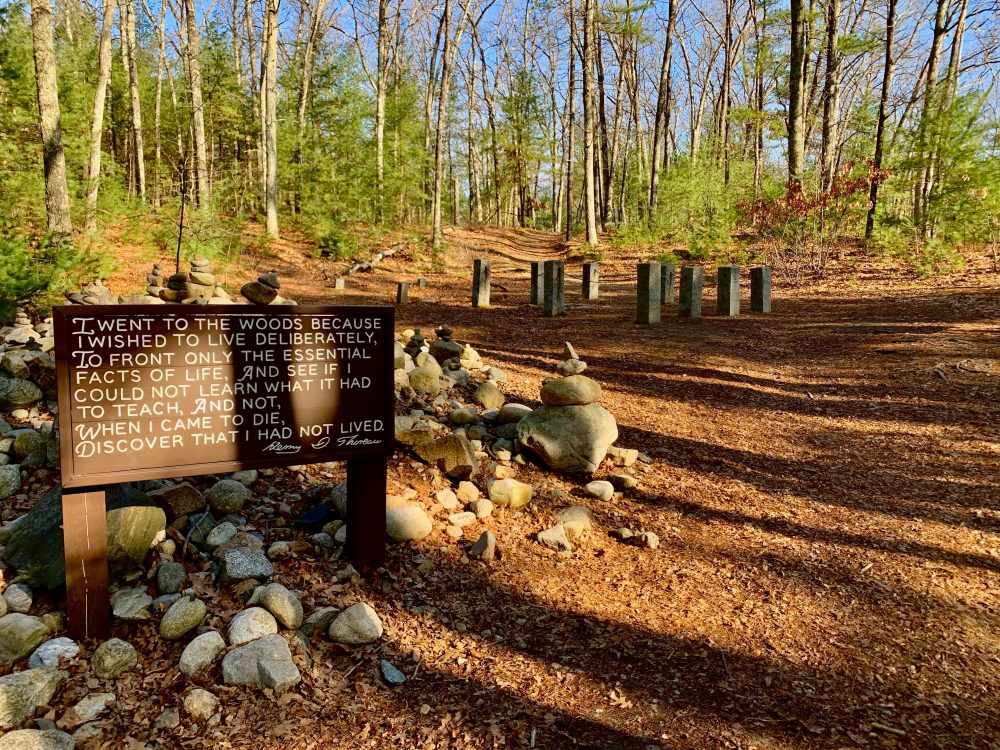 pic 9, Walden Pond, Concord