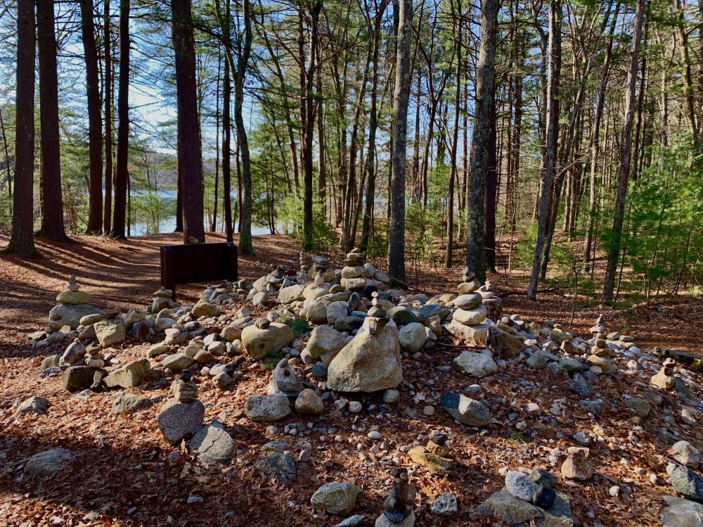 Pic 10, Walden Pond, Concord
