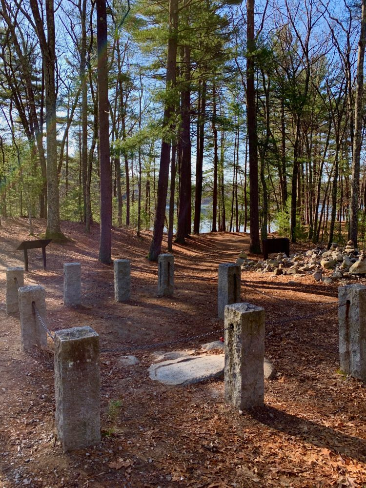Pic 13, Walden Pond, Concord