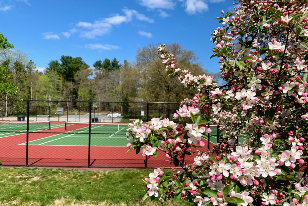 Hunnewell tennis courts, Wellesley