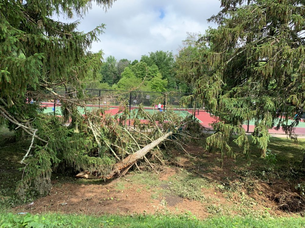 Wellesley storm, Hunnewell tennis courts