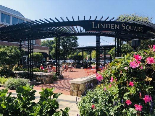 linden square summer afternoon