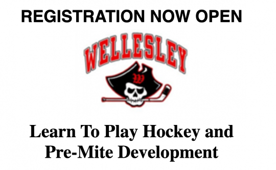 Wellesley Youth Hockey