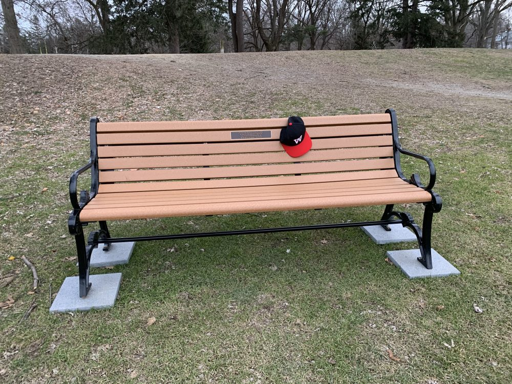 Harry Clark bench at Reidy