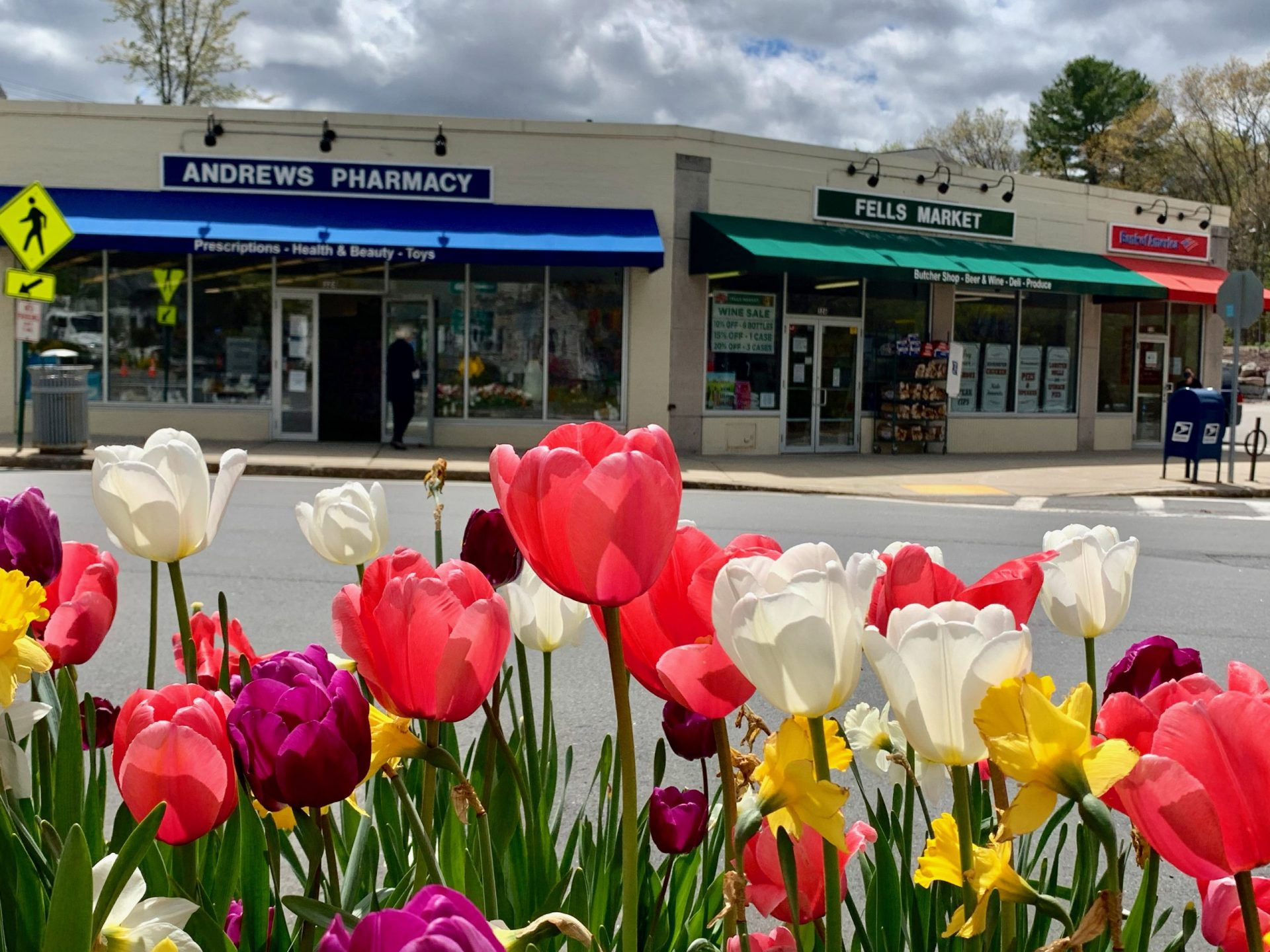 Andrews Pharmacy & Fells Market, Wellesley